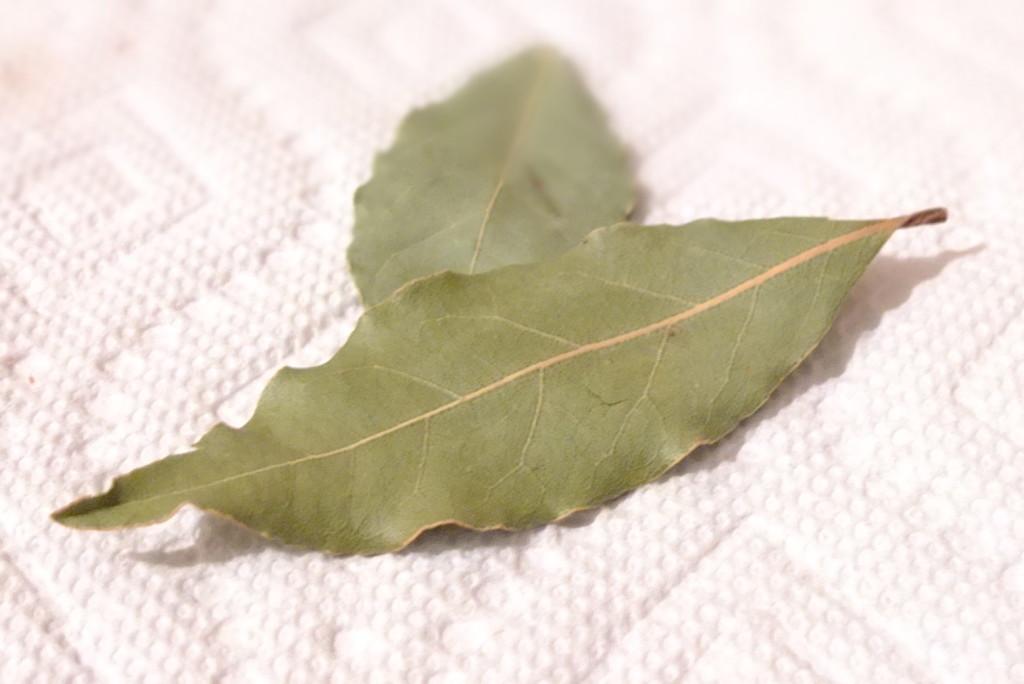 bay leaf for cooking goulash