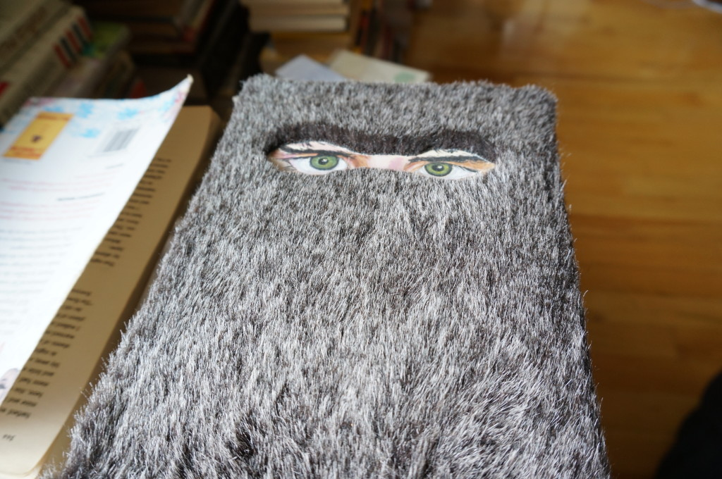 This is my furry copy of Eggers' novel, The Wild Things-- inspired by Maurice Sendak's original.