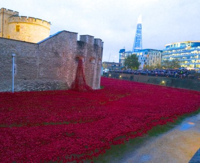 red poppy completion tower london final